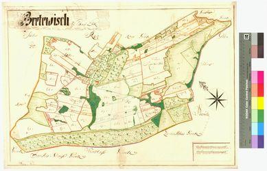 Bretwisch Amt/Distrikt Loitz Altkarten; Thematische Karten - Politik-, Rechts- und Verwaltungskarten