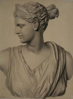 Handzeichnung Diana (Zeichnung einer antiken Büste)