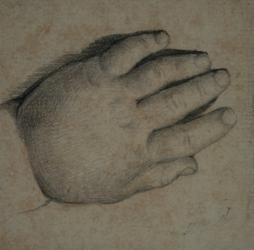 Handzeichnung Handstudie einer linken Kinderhand
