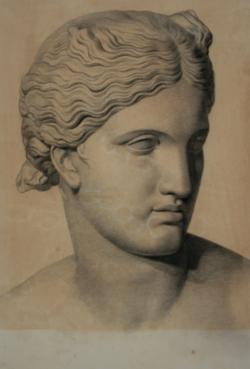 Handzeichnung Kopf der Kapitolinischen Aphrodite