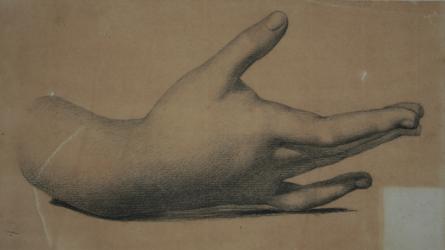 Handzeichnung Studie einer rechten Hand