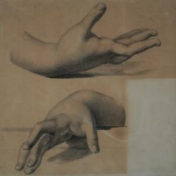 Handzeichnung Zwei Handstudien
