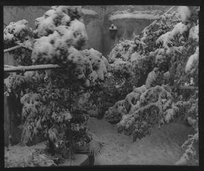 Glasplattendia Johanniterhospiz (Hof im Schnee) [Jerusalem]