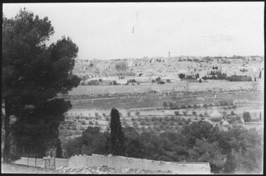 Glasplattendia Jerusalem v. Ölberg