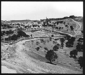 Glasplattendia Jerusalem von SW (Sultansteich)