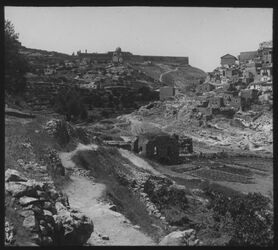 Glasplattendia Jerus. [Jerusalem] Blick v. Kidrontal