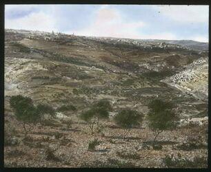 Glasplattendia Jerusalem von Süden