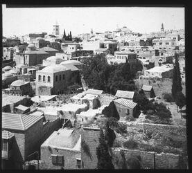 Glasplattendia v. Österr. Hosp. N. S.W. [Jerusalem]