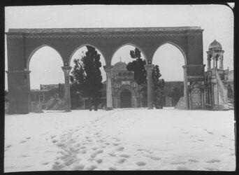 Glasplattendia Haram im Schnee