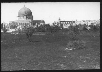 Glasplattendia Tempelplatz von SO. [Jerusalem]