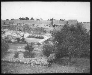 Glasplattendia Jerusalem v. W. Reym.