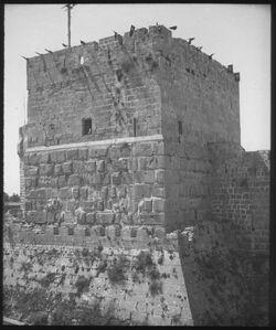Glasplattendia Davidsturm am Sultanfest [Jerusalem]