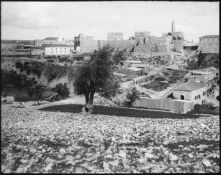 Glasplattendia Citadelle v. Jerusalem v. W.