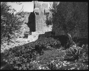 Glasplattendia Citadelle v. Jerus. v. S. [Jerusalem]