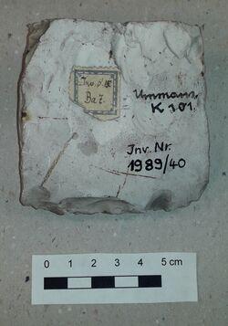 Schneidenfragment eines Feuersteinbeils, Ummanz, Ummanz, Altkreis Rügen<br><br>