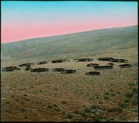 Glasplattendia Beduinenlager in der Wüste Juda