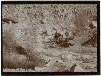 Fotografie Quelle am oberen Ende des w. [wadi] tarfa [Wadi tarfa]