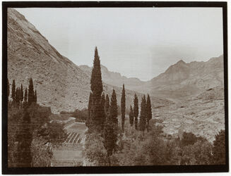 Fotografie Sinaiklostergarten [Gebel musa, Katharinenkloster] Blick n. NW