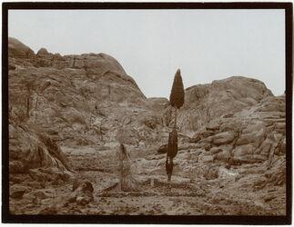 Fotografie v. d. Eliaskapelle zurück n. d. Zypressenbaum [Gebel musa]