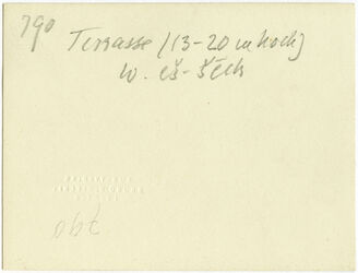 GDIs00998; Fotografie; Terrasse (13-20 m hoch) w. [wadi] es-sech [esch-schech, Wadi esch-schech], aus Nachlass von rund 880 Fotografien von Valentin Schwöbel