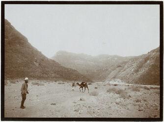 Fotografie w. [wadi] merara, Eingang