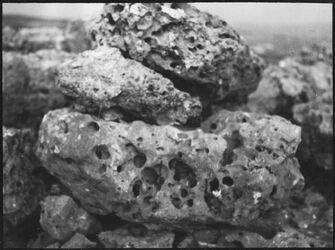 GDIs00406; Fotografie; Stein bei rentis, aus Nachlass von rund 880 Fotografien von Valentin Schwöbel