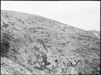 GDIs00420; Fotografie; flexus beim Abstieg ins wadi fara, aus Nachlass von rund 880 Fotografien von Valentin Schwöbel