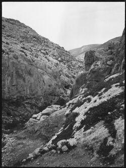 GDIs00421; Fotografie; Unterhalb d. fara-Quelle, aus Nachlass von rund 880 Fotografien von Valentin Schwöbel