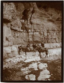GDIs00460; Fotografie; Im w. [wadi] chritun bei d. Quelle 'en chritun [Wadi charetun], aus Nachlass von rund 880 Fotografien von Valentin Schwöbel