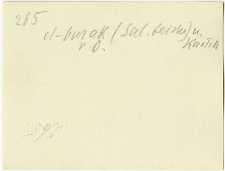 GDIs00478; Fotografie; el-burak (Sal.teiche [Salomonsteiche]) u. Kastell v. O., aus Nachlass von rund 880 Fotografien von Valentin Schwöbel