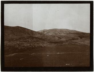 Fotografie Blick n. w. [wadi] bedan v. NO auf d. Weg v. tubas nach