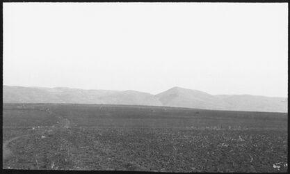 GDIs00522; Fotografie; Absturzberg v. S [Nazarethberge], aus Nachlass von rund 880 Fotografien von Valentin Schwöbel