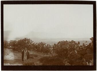 Fotografie battof-Ebene v. SW Berge des Nordrandes vom Weg zw. seffurir n. Kefr Menda