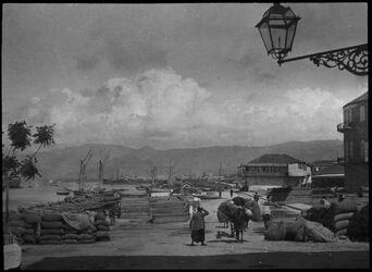 GDIs00596; Fotografie; berut [Beirut] Hafen u. Libanon, aus Nachlass von rund 880 Fotografien von Valentin Schwöbel