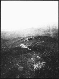 GDIs00612; Fotografie; tell abu-n-neda Blick n. N, aus Nachlass von rund 880 Fotografien von Valentin Schwöbel