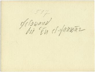 GDIs00716; Fotografie; Felswand bei en 'el-fauwar, aus Nachlass von rund 880 Fotografien von Valentin Schwöbel