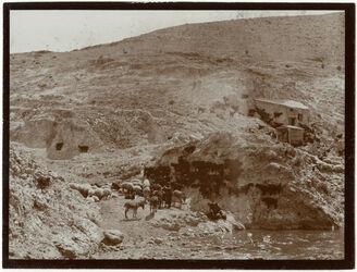 Fotografie w. kelt bei Mühle [wadi kelt]