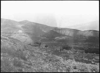 GDIs00763; Fotografie; wall. [watt ?] unterhalb mar saba [mar saba] Lager der obedije [?], aus Nachlass von rund 880 Fotografien von Valentin Schwöbel