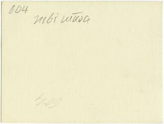 GDIs00804; Fotografie; nebi musa, aus Nachlass von rund 880 Fotografien von Valentin Schwöbel