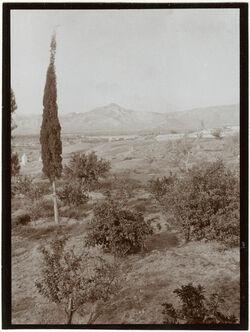 Fotografie Blick v. Jericho nach W. Aquädukt u. Strasse n. Jerusalem