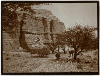 Fotografie Unterhalb der Burg v. ezzuwera v. O. [mizpe zohar]