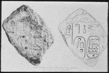 Glasplattendia Tell el-mutesselim [Megiddo], Fragment einer Stele Sheshonk I.