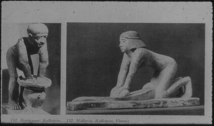 Glasplattendia Kairo, Nat. Mu., Bierbrauer, Florenz, Müllerin