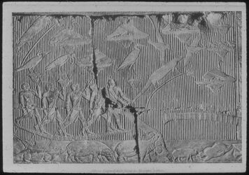 Glasplattendia Sakkar, Grab d. Mereruka, Papyrusdickicht
