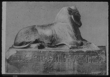 Glasplattendia Kairo, Mus., Sphinx Amenemhets III.