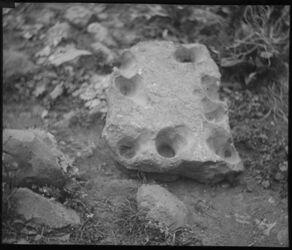 Glasplattendia Stein mit Napflöcher bei tell el-kadi [Tell al-Kadi]