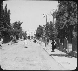 Glasplattendia Hetzel Avenue [wohl: Jaffa, Tel Aviv]
