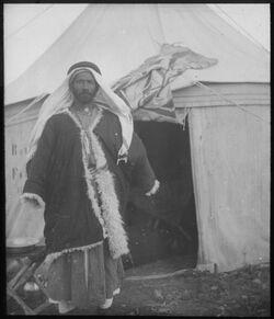 Glasplattendia Musa vor einem Zelt