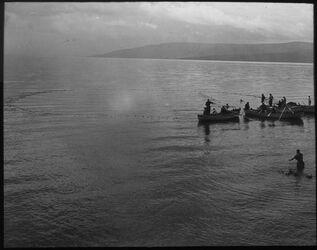 Glasplattendia sarak-Netzfischerei See von Tibrias [Tiberias] [Genezareth (See)]