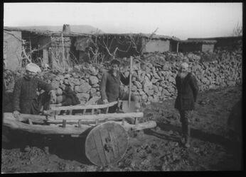 Glasplattendia [Landwirtschaft, Wagen, Palästina]